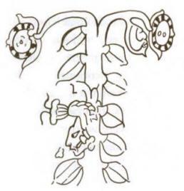 cacao-tree-maize-god.jpg