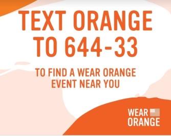parkland blog wear orange event